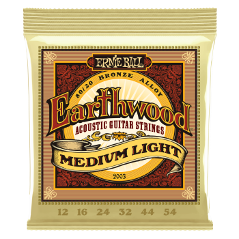 ERNIE BALL  Earthwood Med Lite 80/20 2003